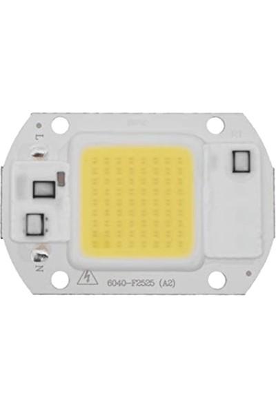 Helios Opto 50W Cob Çip LED Beyaz