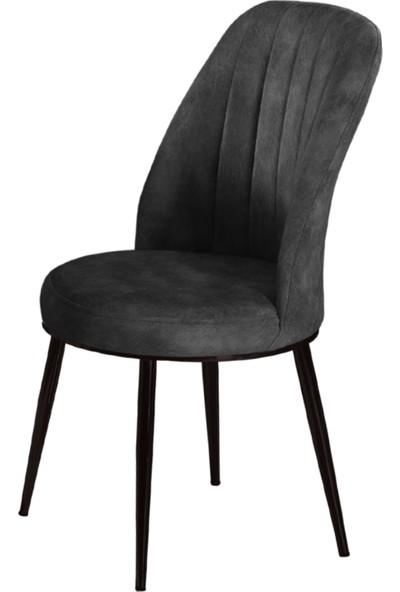 Armens Natura Mutfak Bahçe Cafe Restorant Sandalyesi Siyah Ayak