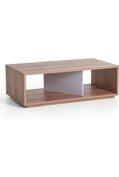 Ruum Store By Doğtaş Cury Orta Sehpa Modern Tasarım Ceviz Opak Gri