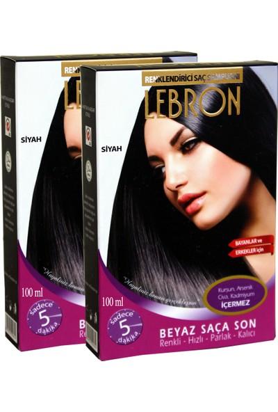 Lebron Renklendirici Saç Şampuanı 1.0 Siyah 8X25 200 ml