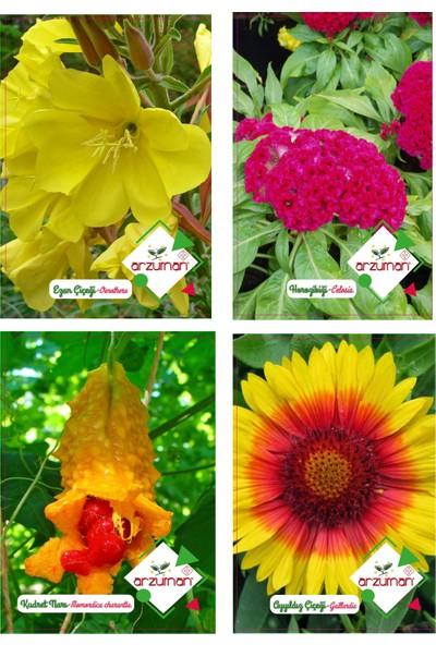 Arzuman Ezan Çiçeği Horozibiği Kudret Narı Ayyıldız Tohumu