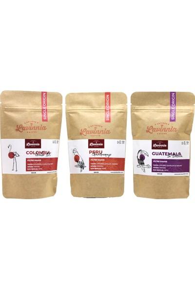 Lavinnia Colombia + Peru + Guatemala Yöresel Filtre Kahve 3'lü 100 gr