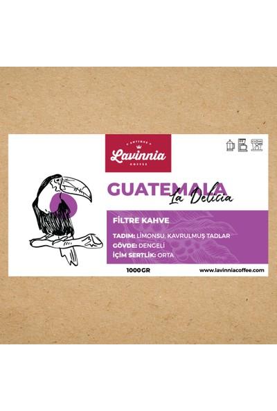 Lavinnia Guatemala La Delicia Yöresel Filtre Kahve 1 kg