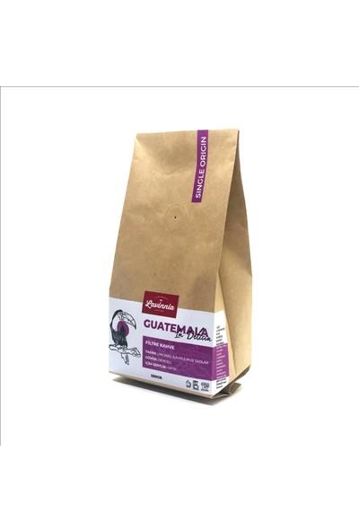 Lavinnia Guatemala La Delicia Yöresel Filtre Kahve 250 gr