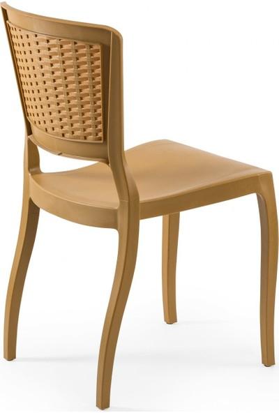 Tilia Antro Rattan Detaylı Sandalye Ahşap