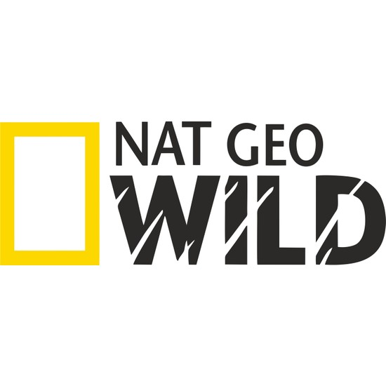 Sticker Fabrikası Nat Geo Wıld Netgeowild National Geographic Sticker 20 x 7,5 cm Renkli
