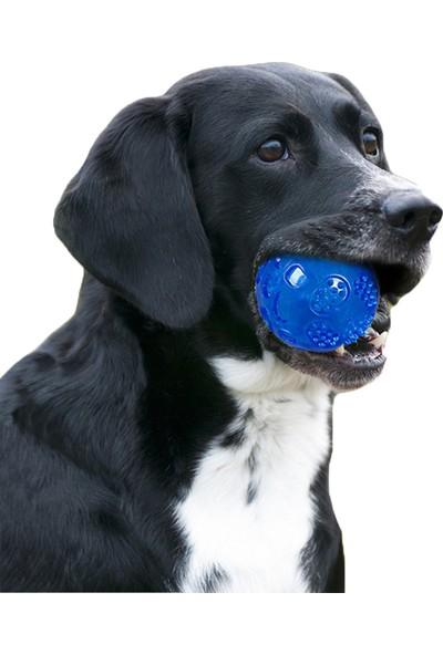 Yukka Pet Köpek Isırıma ve Diş Oyuncağı Su Geçirmez Elastik Top Mavi