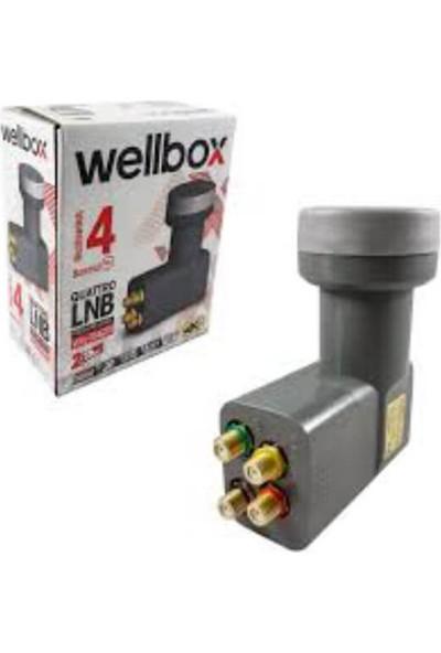Wellbox Dörtlü Quattro Premium Series Santral Lnb WXL-104QTR