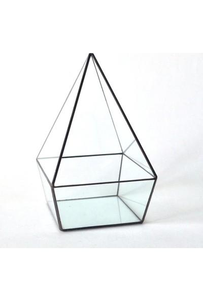 Martenitsa Geometrik Teraryum