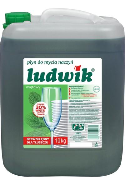 Ludwik Nane Özlü Sıvı Bulaşık Deterjanı 10 kg