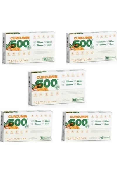 Curcumin 500 Detox 50 Şase x 5 Kutu