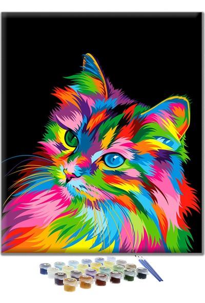 Sayılarla Boyama Seti -Renkli Kedi