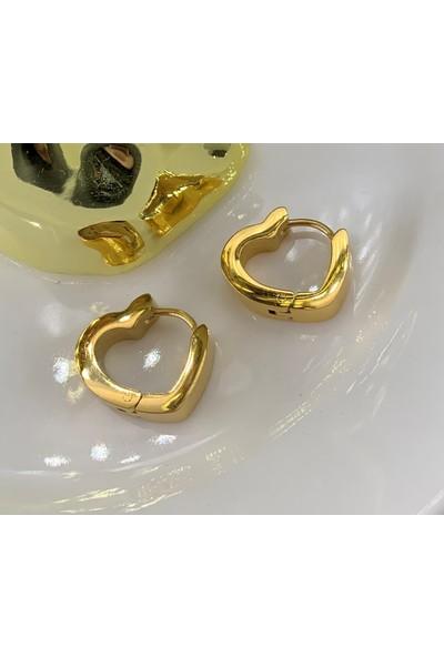 Lily Takı Minimal Kalp Kadın Gold Renk Çelik Küpe
