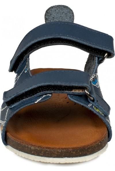 Piarmoni Msm Trend Sandals 2096 Deri Mavi Çocuk Sandalet