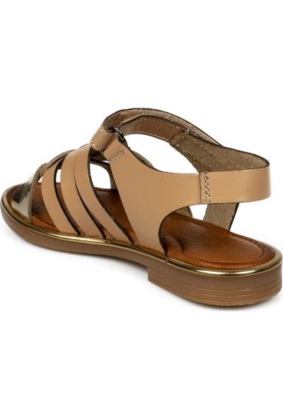 Piarmoni Msm Trend Sandals 2318 Cırtlı Çocuk Sandalet