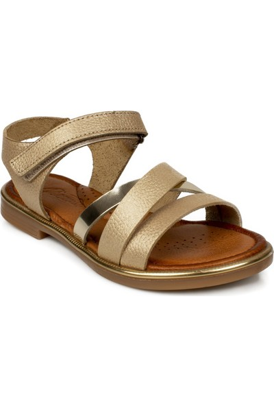 Piarmoni Msm Trend Sandals 2325 Cırtlı Çocuk Sandalet