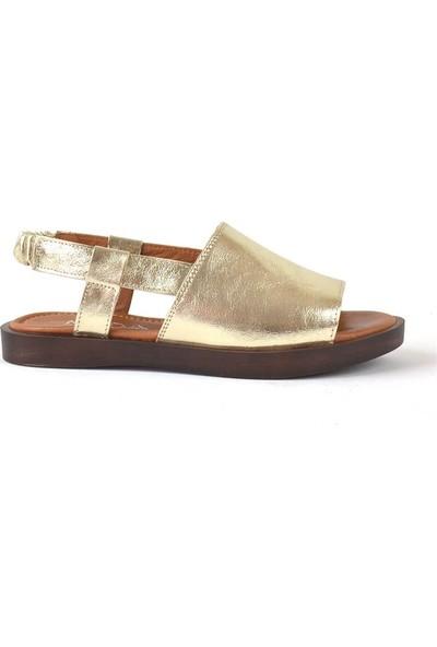 Moda Arena Altın Simli Deri Kadın Sandalet