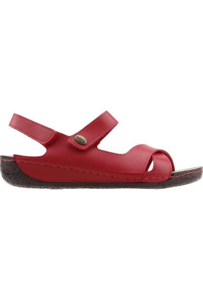 Muya 97006-3162 Günlük Anatomik Kadın Sandalet Terlik