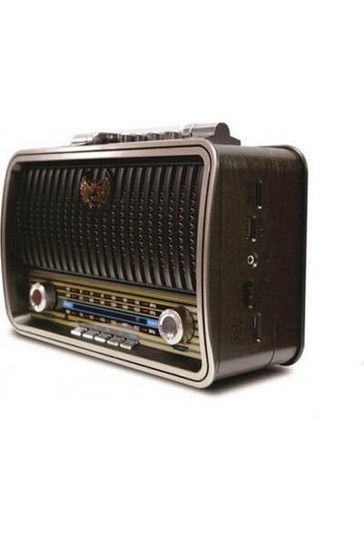 Polygold PG-4401 Nostaljik Radyo
