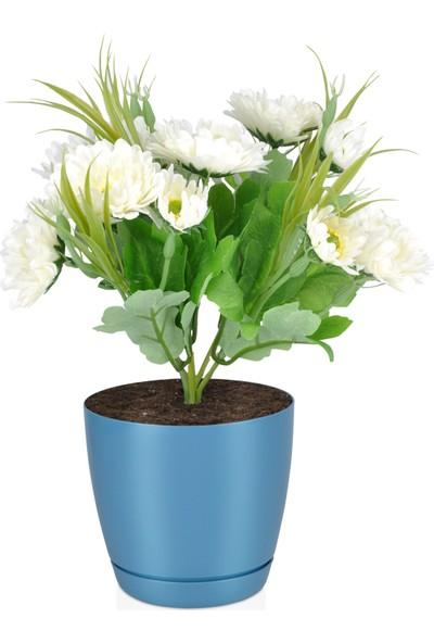 Favilla Floris Saksı Tabaklı 14 cm,1, 5 Lt Mavi