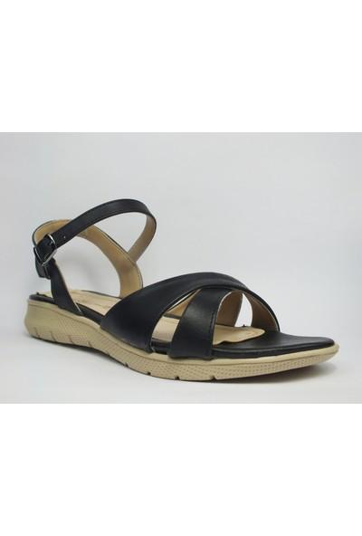 Tria Siyah Sandalet Kadın Ayakkabı 01010136