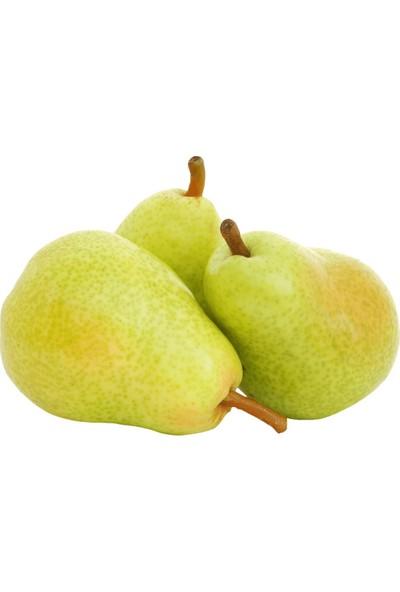 Vitamin Bahçem Finike Yaz Meyve Paketi 8 kg