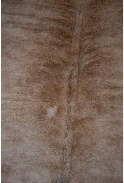 Pegia Hakiki Dana Postu Deri Halı 175 x 234 cm FST085