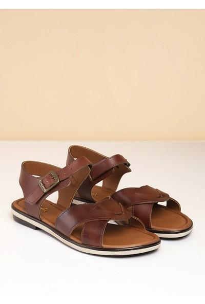 Pierre Cardin Kadın Sandalet Pc-2440-1714278 04-Kahve