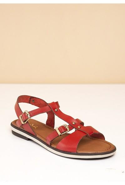 Pierre Cardin Kadın Sandalet Pc-2441-2637783 05-Kirmizi