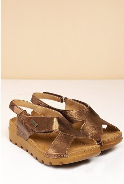 Pierre Cardin Kadın Sandalet Pc-1378-3630-12240831 187-Bronz