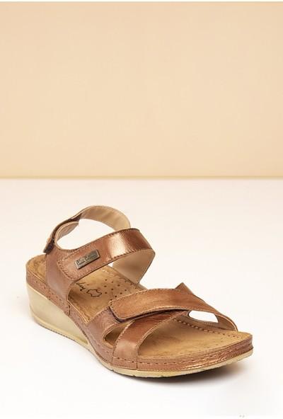 Pierre Cardin Kadın Sandalet Pc-1331-3580-12240831 187-Bronz
