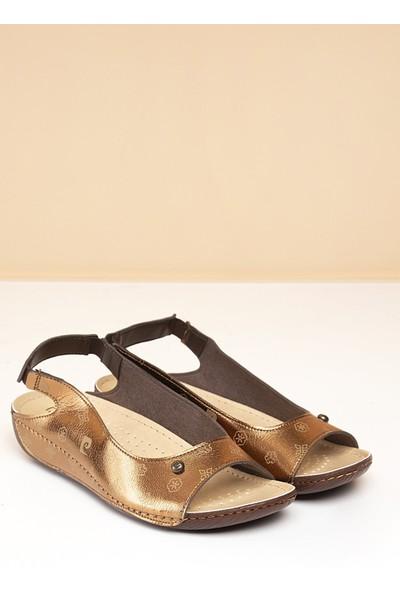 Pierre Cardin Kadın Sandalet Pc-1360-3009-16779206 647-Bronz-Bej