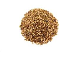 Yelken Sarı Hardal Tohumu 100gr