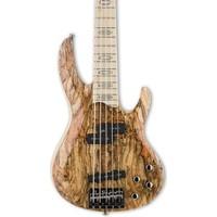 ESP LTD RB-1005SM NATURAL Bas Gitar (LRB1005SMNAT)