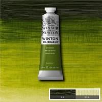 Winsor Newton Winton 37 Ml Yağlı Boya No 37 Sap Green