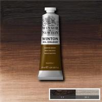 Winsor Newton Winton 37 Ml Yağlı Boya No 41 Vandyke Brown