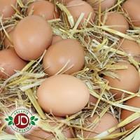 Jd Organik Gezen Tavuk Yumurtası (30 Adet) - Büyük Boy