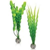 Biorb Plastik Bitki 25 Cm Yeşil İkili Pl02