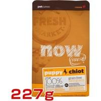 Petcurean Now Fresh Tahılsız Tavuk Somon Ve Ördekli Yavru Köpek Mama 227 Gr