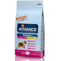 Advance Medium Senior Orta Boy Irk İleri Yaşlı Köpek Kuru Maması 12 Kg