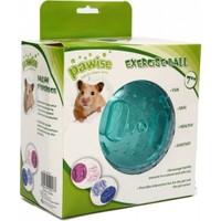 Pawise Hamster Egzersiz Oyun Topu 17,5 Cm