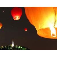 Wildlebend Dilek Balonu