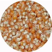 Kardelen Kuruyemiş Mısır Popcorn 100 gr