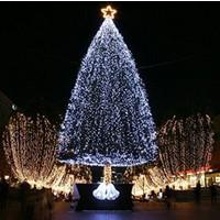 Wildlebend 100 Ledli Beyaz Yılbaşı Ağacı Işığı Led Ampül