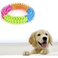 Wildlebend Köpek Diş Temizleyici Oyuncak