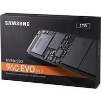 Samsung 960 Evo 1Tb Ssd M.2 Nvme Mz-V6E1T0Bw