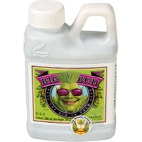 Advanced Nutrients Big Bud - Büyük Meyveler 250 Ml