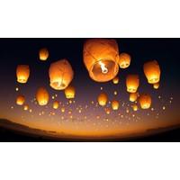 Coşkunlar Dilek Feneri 5 Adet