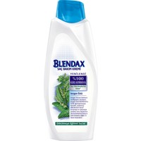 Blendax Isırgan Özlü Saç Kremi 600 Ml