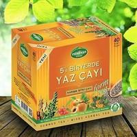 Mindivan 5'İ Bir Yerde Yaz Çayı (40 Poşet)